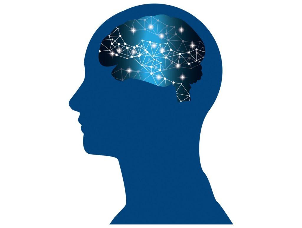 頭脳回路イメージ