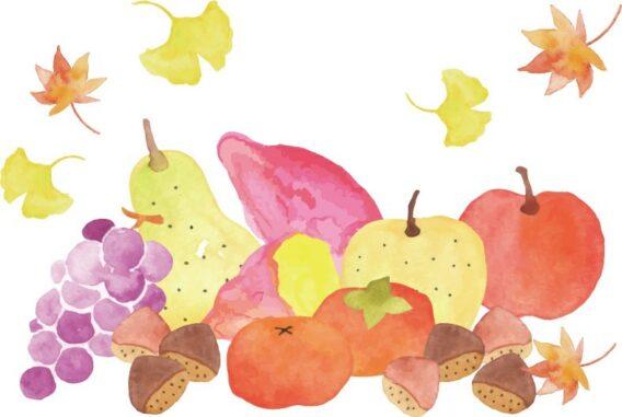秋の味覚画像