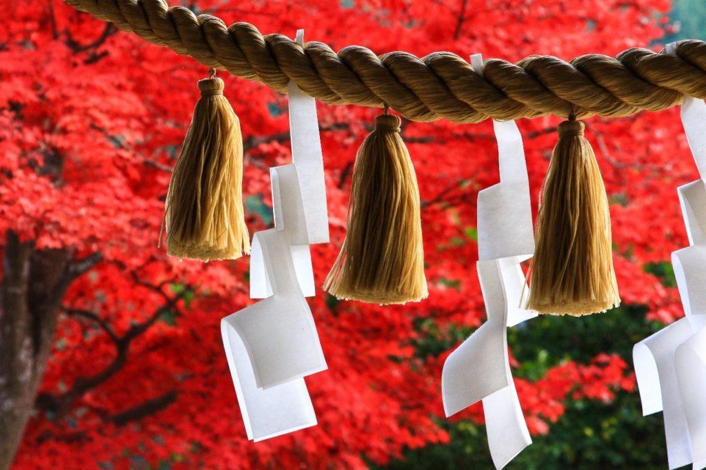 神社のしめ縄の写真