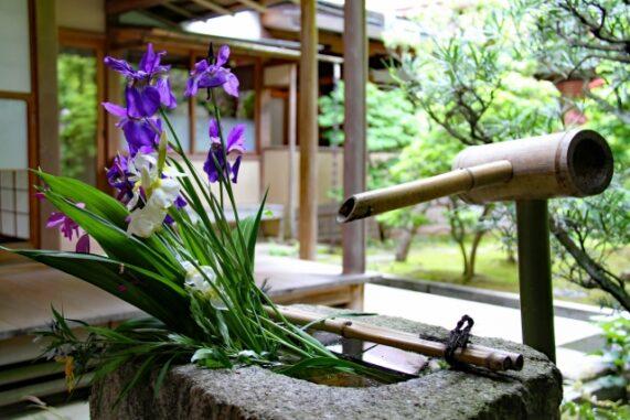 日本庭園のししおどし写真