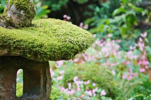 苔の生えた灯籠の写真