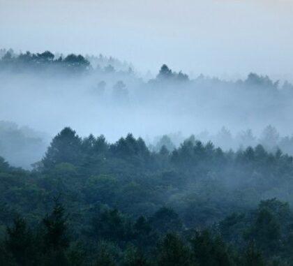 山の霧の写真