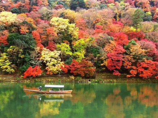 嵐山の紅葉の写真