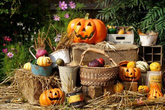 ハロウィンの飾り付けの写真