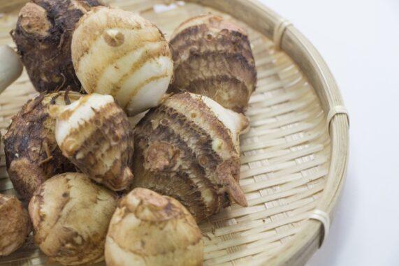 里芋の写真