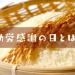 稲とお米の写真