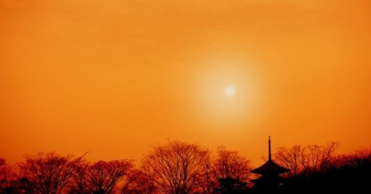夕暮れの京都の写真