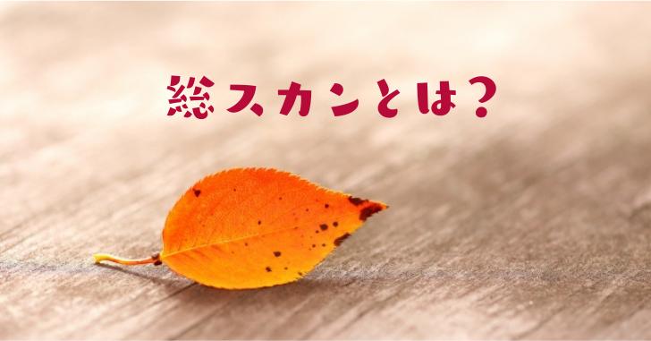 一枚の落ち葉の写真