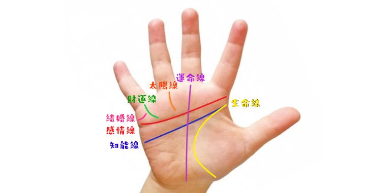 手相の7大線を描いた手のひらの写真